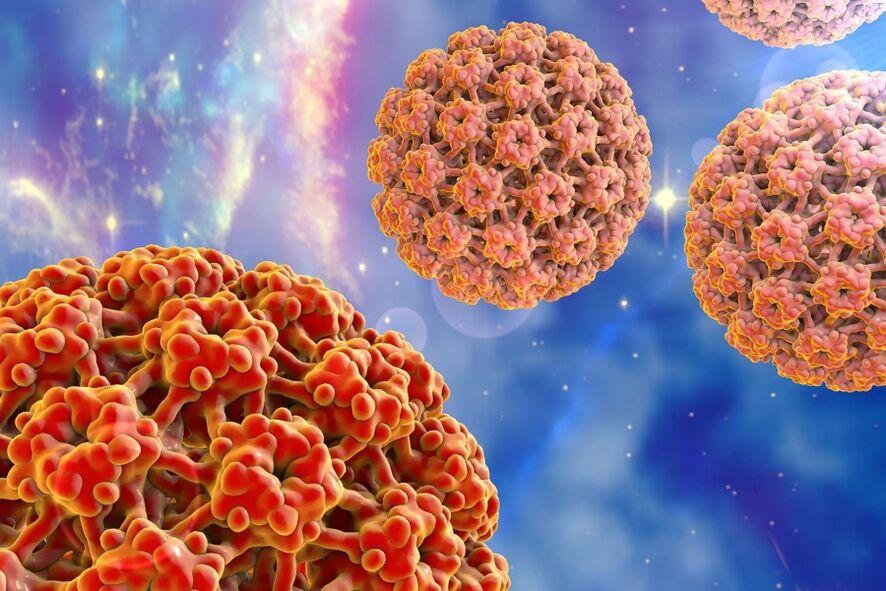 papilomavirusuri umane risc oncogen hpv virus hoito